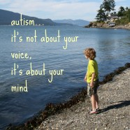 Autism: Don't Ask, Don't Tell?