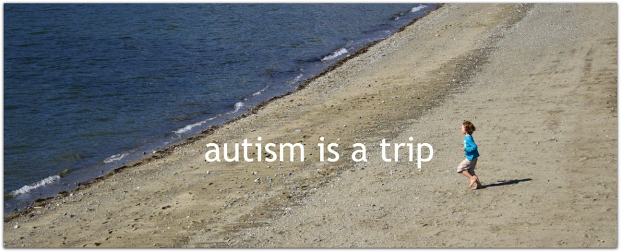 Autism is a Trip